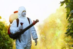 Dezinsectie, deratizare, decontaminare Videle
